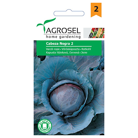Semintele de varza rosie, Agrosel Cabeza Neagra 2