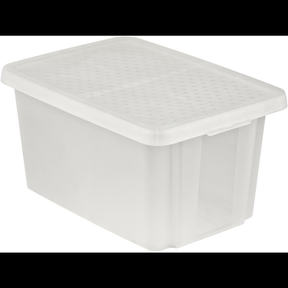 Cutie depozitare cu capac, Essentials, transparent, 45 L imagine MatHaus.ro