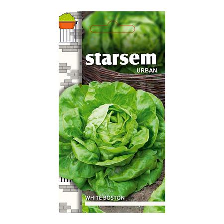 Seminte de salata, Starsem White Boston
