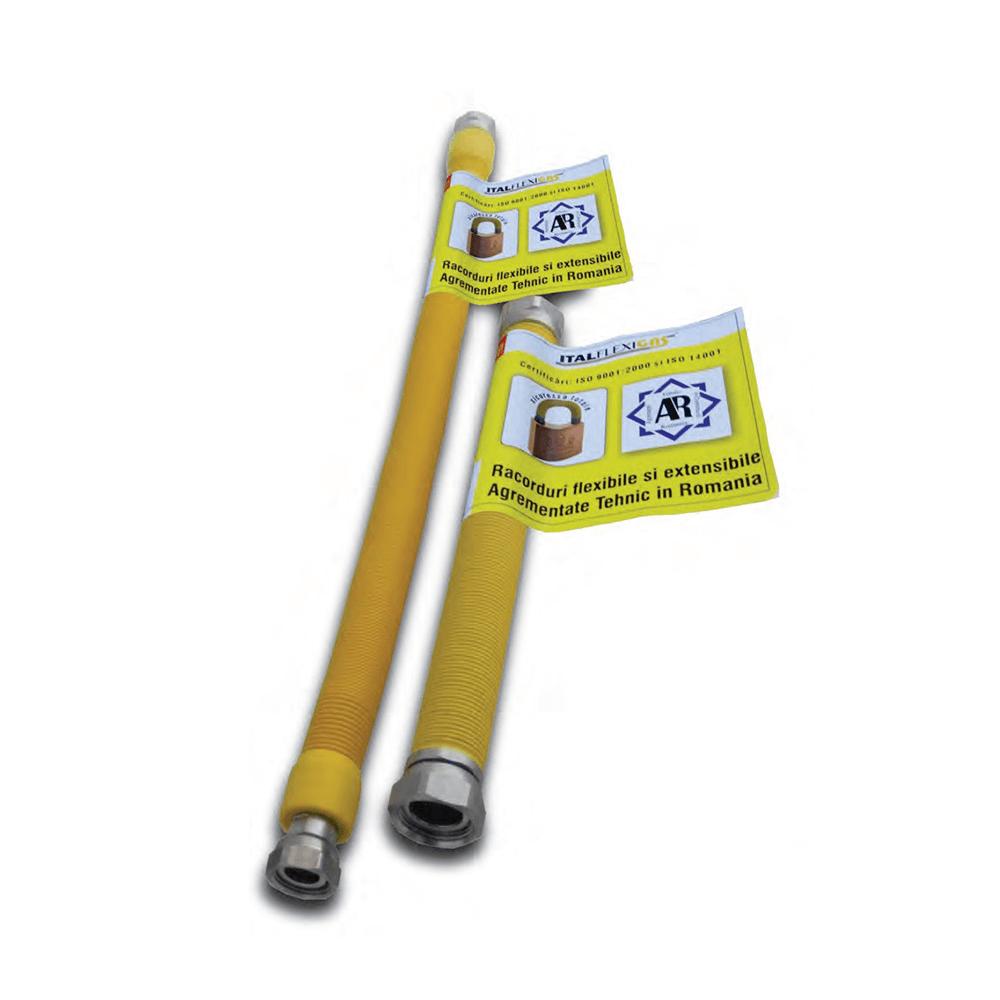RACORD GAZ INOX 750 - 1500 1/2 X 1/2 MF