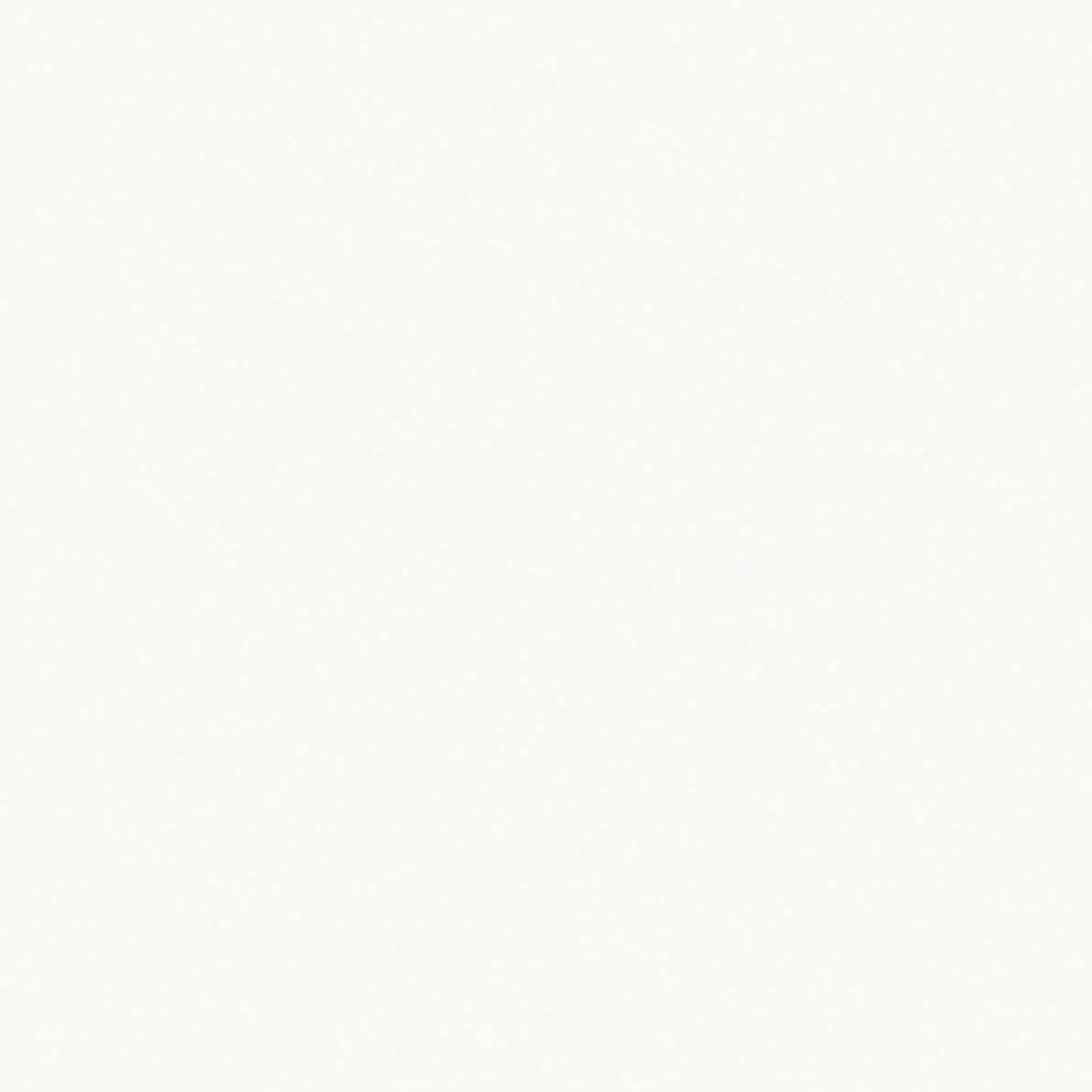 Pal melaminat Kronospan Alb W 114 PE 2800 X 2070 x 18 mm mathaus 2021