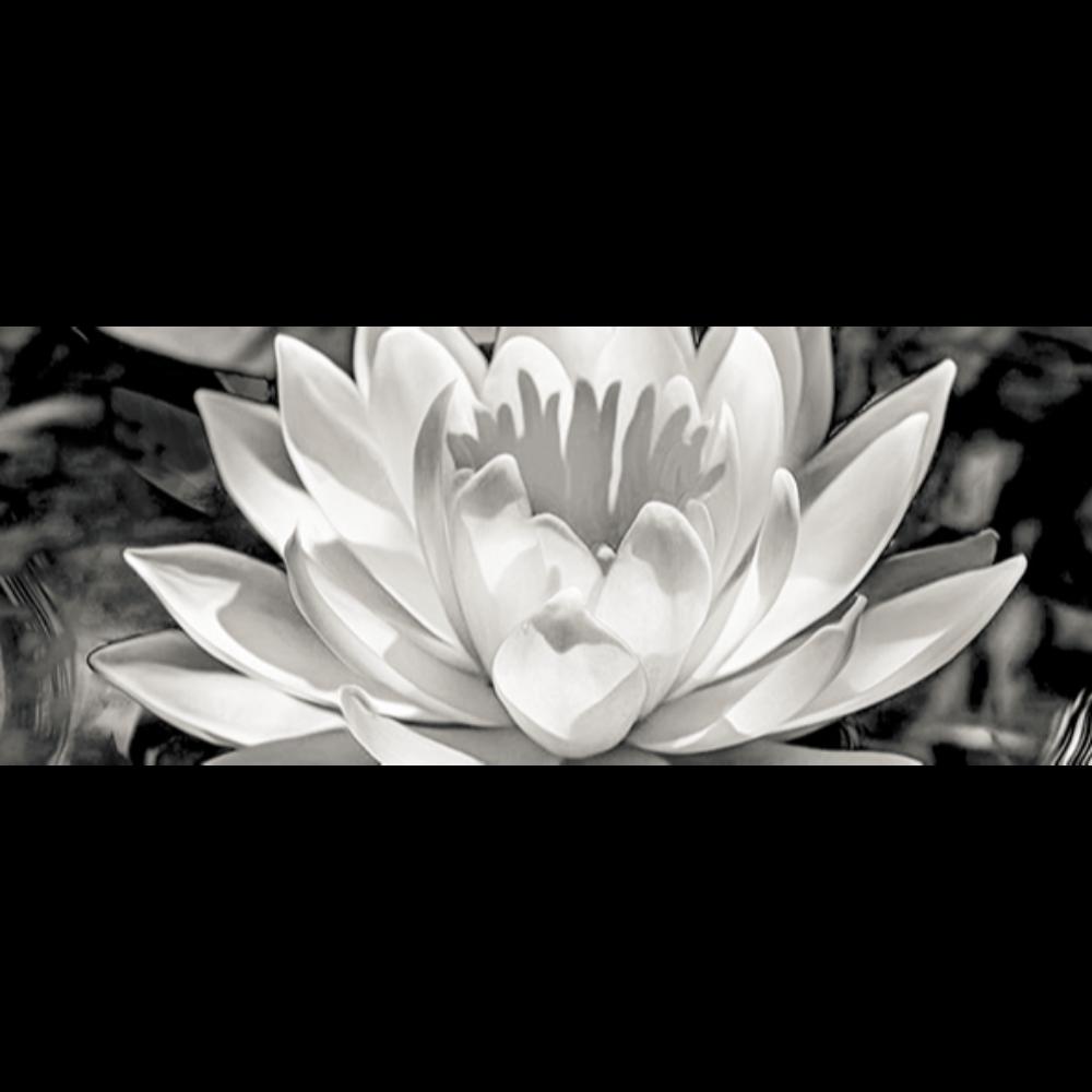Faianta ceramica Keramin Elegy 1-tip 3, lucioasa, stil elegant, alb/negru, 20 x 50 cm