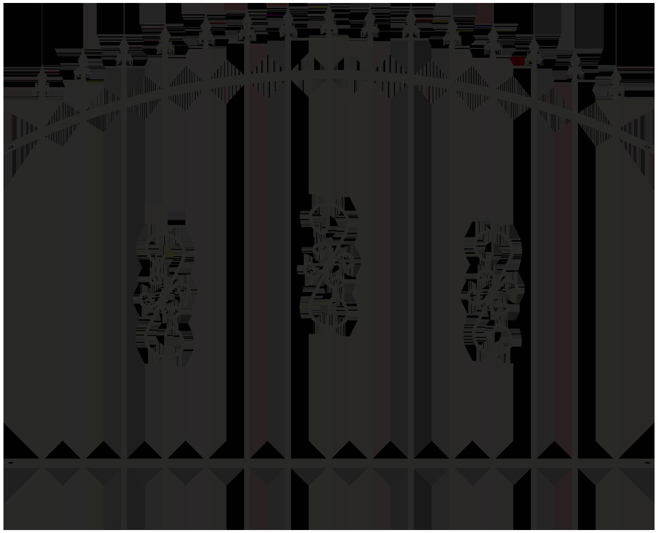 Panoul Morena, negru RAL7016, 2 x 1,5 - 1,70 m