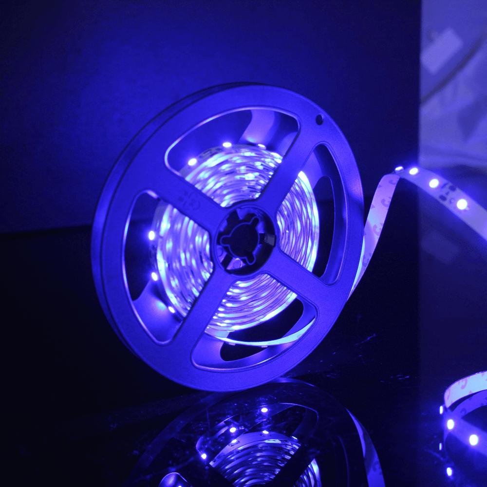 Banda LED Flink, albastru, 60 leduri/m, rola 5 m imagine 2021 mathaus
