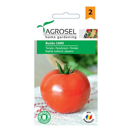 Seminte de tomate, Agrosel Buzau 1600