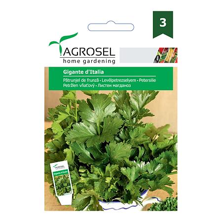 Seminte de patrunjel de frunza, Agrosel Gigante D`Italia